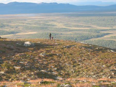 2011 Ripjakt utsikt.jpg