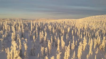 2016 Snö 8.jpg
